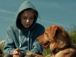 """Zsófia Psotta and """"Body"""" in """"White God"""" (c/o Proton Cinema/InterCom/Magnolia Pictures)"""