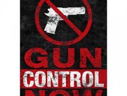 gun-control-now-poster