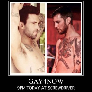 gay4nowScrewdriver