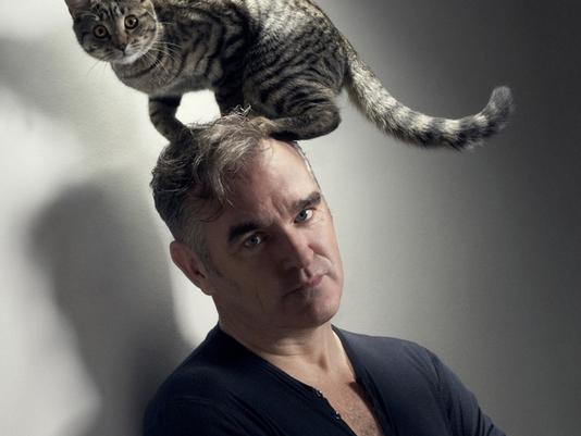 MorrisseyCat