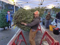 Seattle Area Support Group's annual Xmas tree lot will not happen in 2018.  Photo via SASG's Facebook page