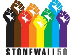 stonewall50 Fists